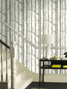 Woods New Contemporary Two by Cole & Sons wallpaper via Refined Rooms