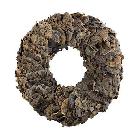 Check out this gorgeous collection of unique fall wreaths...including this lichen wreath
