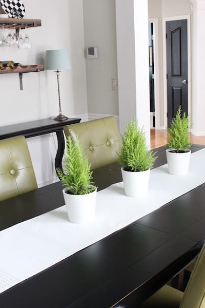 example of using live plants to decorate staged dining room